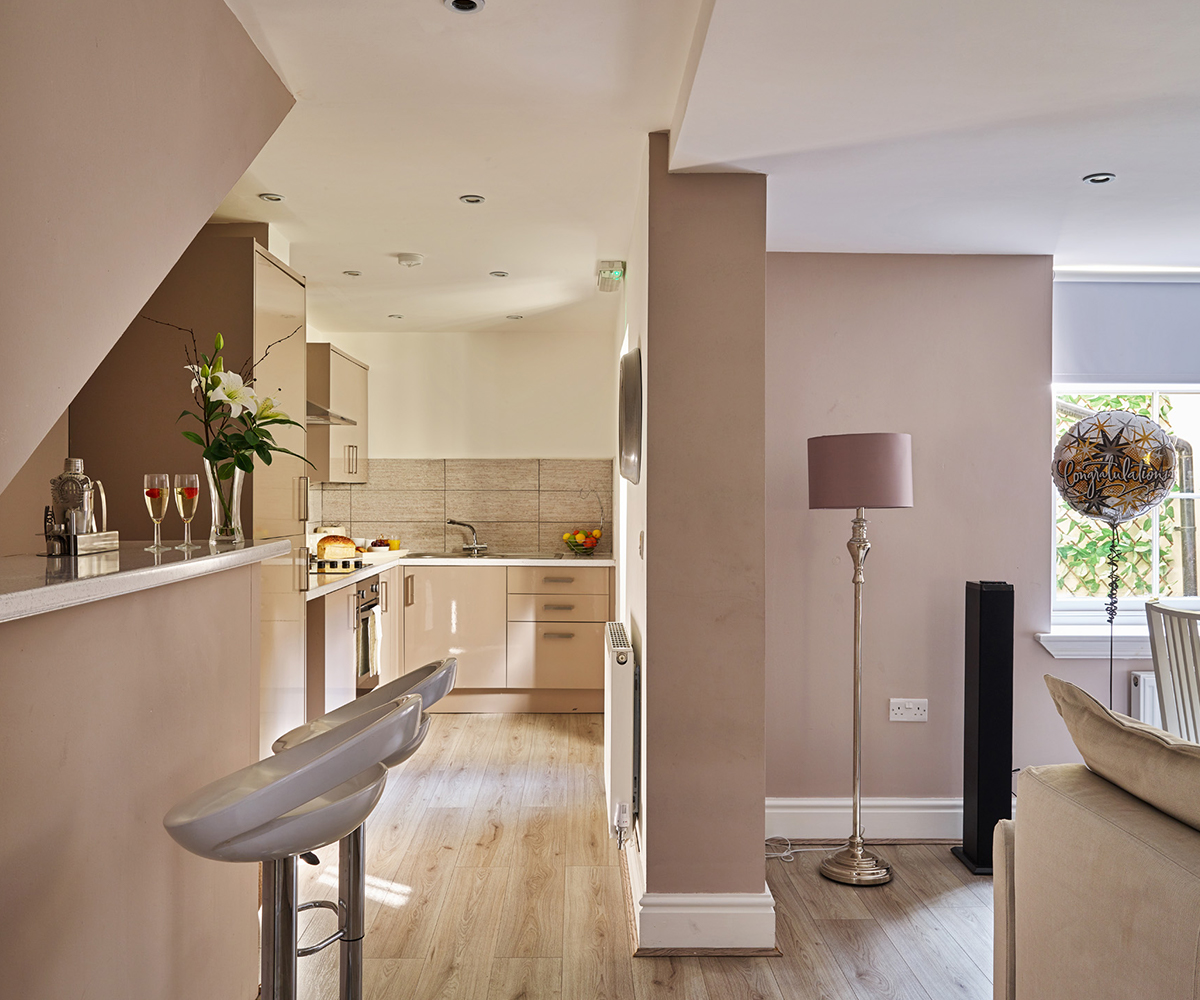 Luxury Basement Apartment